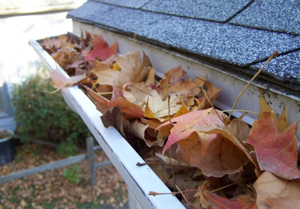 keeping gutters clean